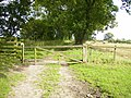 Lingmoor Lane - a bridleway and footpath - geograph.org.uk - 226845.jpg