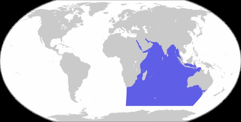 Archivo:LocationIndianOcean.png