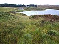 Loch Stack Lodge - geograph.org.uk - 67025.jpg