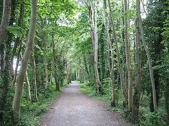 Lôn Las Ogwen - The Lôn Las Ogwen where it follows the route of the Penrhyn Quarry Railway in the valley of Afon Cegin.
