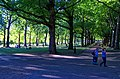London - Green Park - View NW.jpg