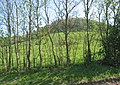 Looking up Frocester Hill - geograph.org.uk - 421693.jpg