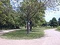 Luce Line Bike-Walk Trail, Cosmos MN - Lake Thompsom - panoramio.jpg
