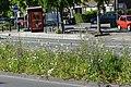 Lunetstraat, Breda P1490061.jpg