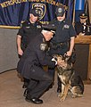 MTA PD 2014 Canine Unit Graduation.jpg