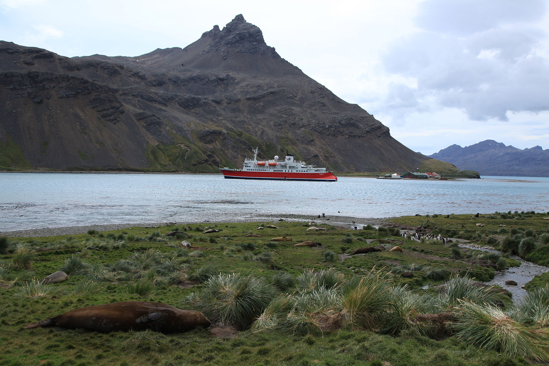 King Edward Point Travel Guide At Wikivoyage