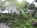 Madeira em Abril de 2011 IMG 1978 (5664503634).jpg