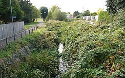 a stream in an overgrown channel with a tarmac path running alongside