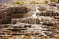 Mammoth Hot Springs detail 9.jpg