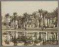 Mannen met geiten onder palmen aan het water in Bedrechen Caire, Palmie(..) à Bedrecken (titel op object), RP-F-F01148-DR.jpg