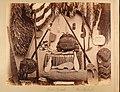 Maori Curios, New Zealand, 1891 (5c9b9b9a-2725-4768-a250-70237c7ddb48).JPG