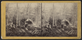 Maple sugar making in the Northern Woods of New York, by E. & H.T. Anthony (Firm).png