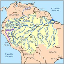 Das Einzugsgebiet des Amazonas (gelb); sein Quellfluss Marañón ist lila markiert. (Quelle: Wikimedia)