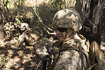 Marines conduct training patrols during Talisman Sabre 2015 071215-M-VM748-058.jpg
