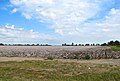 Marston-cotton-field-mo.jpg
