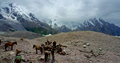 Masherbrum Mountains among the clouds.png
