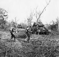 Matilda tanks Labuan.jpg
