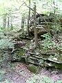 McConnells Mill State Park - Pennsylvania (4883943678).jpg