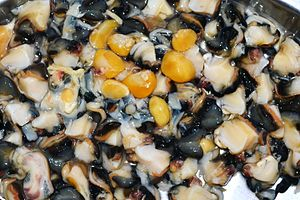 Neritidae - Meat extracted from freshwater nerites in the Punjab prior to cooking