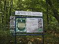 Medobory Nature Reserve (2).JPG