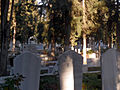 Mersin Cemetery b.jpg