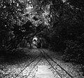 Miniature railway, Littlehampton, Sussex - geograph.org.uk - 476903.jpg