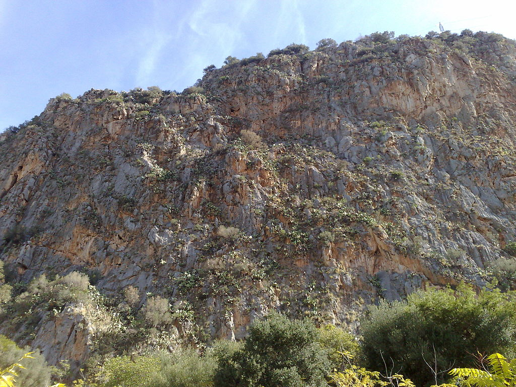 Monte Pellegrino à Palerme (Riserva naturale Monte Pellegrino) - Photo de Dedda71