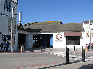 Monterey - Monterey Bay Aquarium