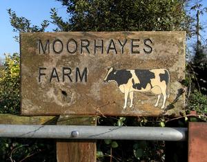 """Moor Hayes - """"Moorhayes Farm"""", house-sign, viewed in 2017"""