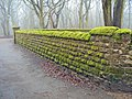 Moss covered wall near Annesley church - geograph.org.uk - 1705120.jpg