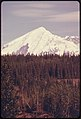 Mount Drum (Elevation 12,002 Feet) Seen From Copper Center Looking East. The 300 Mm Lens Shows the Dormant Volcano Rising Above the White Spruce Forest That Is Typical of Many Locations in the Area...08-1974 (3972081096).jpg