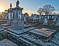 Mount Jerome Cemetery - 146123 (46220593231).jpg