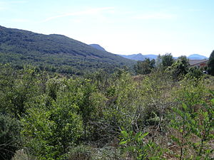 Languedoc-Roussillon - Landscape in Aude, Languedoc-Roussillon