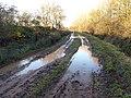 Muddy Track - geograph.org.uk - 1072646.jpg