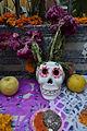 Muerte floral.jpg