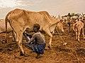 Mundari tribe in South Sudan.jpg