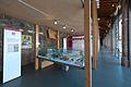 Museo del Prosciutto - Langhirano (PR) - Interno.jpg
