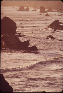 Cambria State Marine Conservation Area