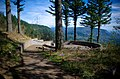 Nancy Russell Overlook from Cape Horn Trail-Columbia River Gorge (25032682121).jpg