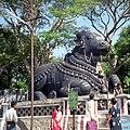 Nandi the bull (6159158656).jpg
