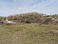 Nationaal Park Kennemerland (27498849918).jpg