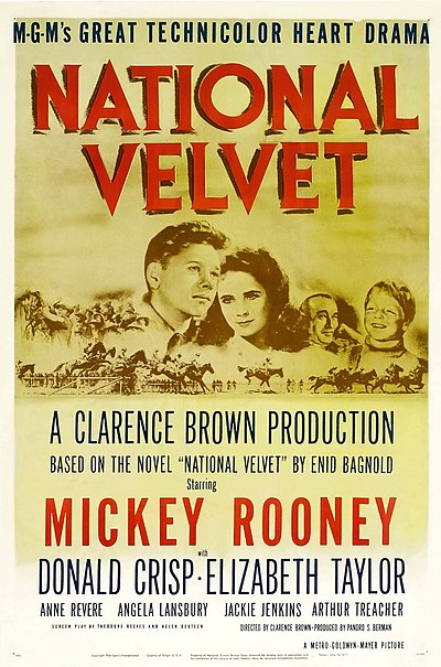 Picture of a movie: National Velvet