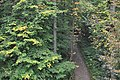 Nationalpark Hainich (1).jpg