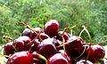 Natural foodstuff 00.jpg