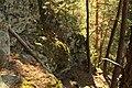 Natural monument Zabrdská skala in 2011 (13).JPG