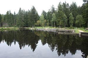 Naturmoorbad in Warmensteinach