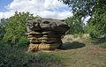 Naturschutzgebiet Aechelbur 01.jpg