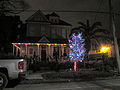 New Orleans Prytania Street Night Light Tree.JPG