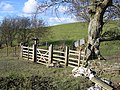 New Stile and Gate on the Clwydian Way - geograph.org.uk - 355087.jpg