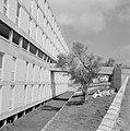 Nieuwbouwflat met inpandige galerij en loopbrug in de vlakte van Jezreel bij Saf, Bestanddeelnr 255-4038.jpg
